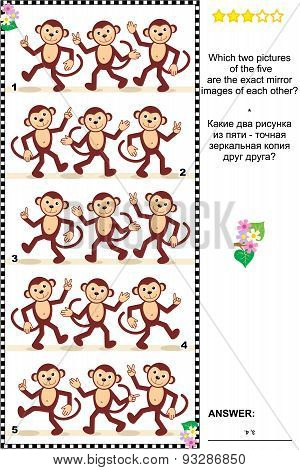 Visual puzzle - find two mirrored copies of monkey rows