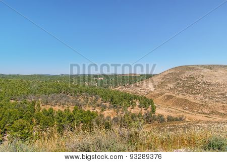 Hills Of The Negev Desert