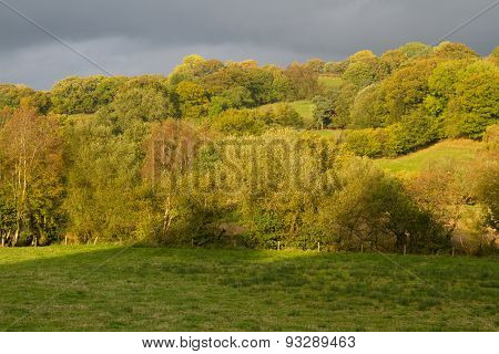 Autumn Fall Fields And Trees, Wales, United Kingdom.