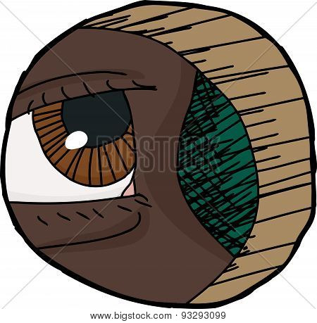 Close Up Eye In Hole
