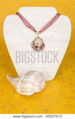 Seashell Necklace on Display Stand