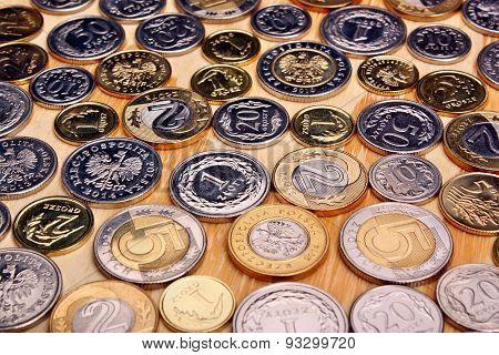 Polish Money Coins