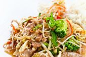 pic of bean sprouts  - Stewed meat with vegetables and bean sprouts - JPG