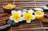 stock photo of frangipani  - Two frangipani and cinnamon - JPG