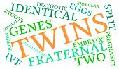 picture of zygote  - Twins word cloud on a white background - JPG