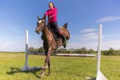 stock photo of horse girl  - Redhead girl on a brown horse jumping - JPG