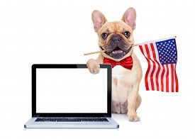 image of bulldog  - french bulldog dog waving a flag of usa on independence day on 4th of july isolated on white background behind a blank empty computer pc screen display - JPG