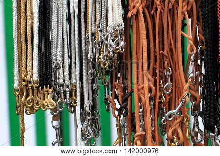 Dog Leads Collection