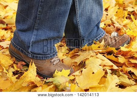 a feet on the autumn yellow leaves