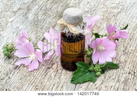 Medicinal plant Malva moschata (musk mallow or musk-mallow) and pharmaceutical bottle on old wooden table. Mallow is used in herbal medicine and medical cosmetology
