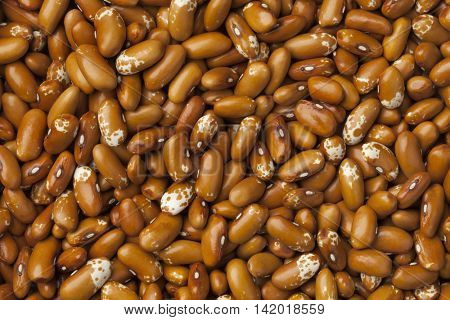 Dried Jacobs cattle gold beans full frame