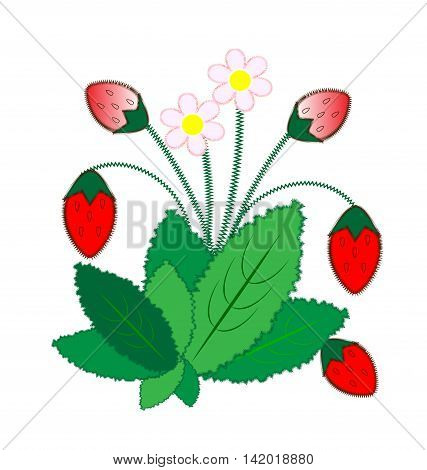 white background and abstract sewing strawberry, leaves and blossom