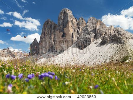 Drei Zinnen or Tre Cime di Lavaredo with beautiful flowering meadow Sextener Dolomiten or Dolomiti di Sesto South Tirol Dolomiten mountains view Italien Alps