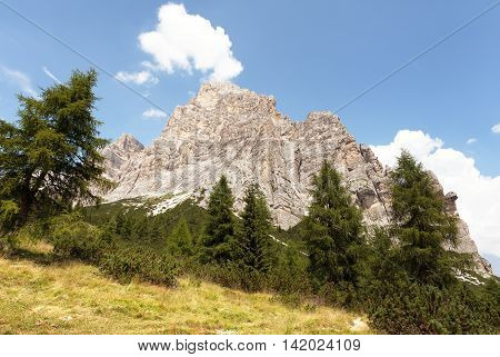 View of Monte Pelmo with larch wood South Tirol Dolomiten mountains Italien European Alps