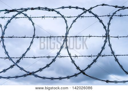 Multistrand Coiled razor and barbed wire fence