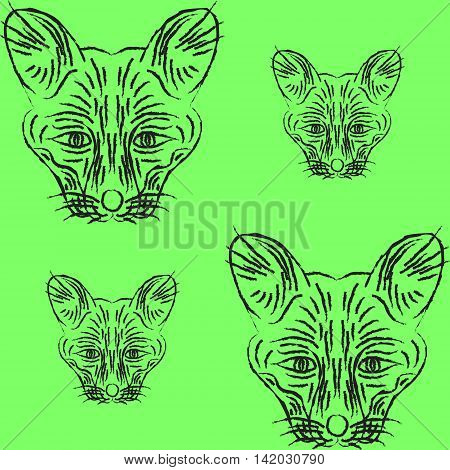 Contour foxes and foxes. Snouts fox for a logo or pattern on the soft green background