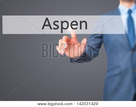 Aspen -  Businessman Press On Digital Screen.