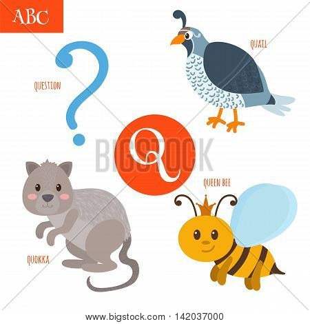 Letter Q. Cartoon Alphabet For Children. Quail, Question, Queen Bee, Quokka