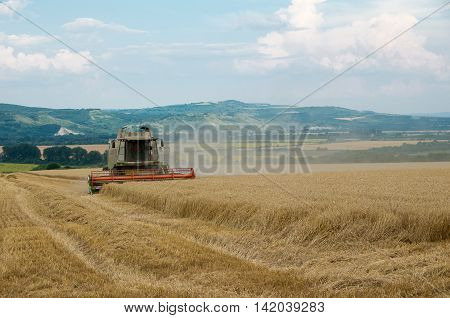 Harvest. Harvesting of wheat with a combine harvester.