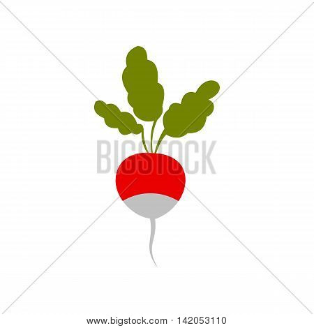 Radish icon in flat style on a white background