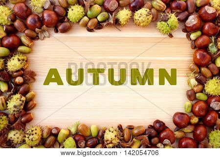 Autumn Written On Wood With Border Of Beechnuts, Conkers, Acorns