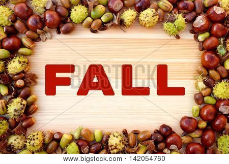 Fall Written On Wood With Border Of Beechnuts, Conkers, Acorns