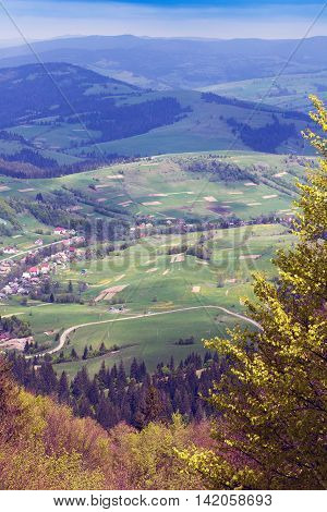 landscape consisting of a Carpathians mountains with fir-tree and green grassy valley with houses and blue sky on the background