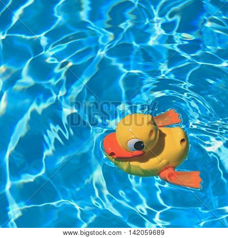 Yellow rubber duck in the home pool in the summer. Travel, holidays and vacation.