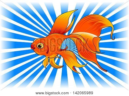 gold fish with bubbles isolated on transparent background