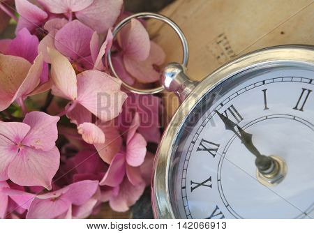 retro clock at twelve soon with and hydrangea flower and old book background