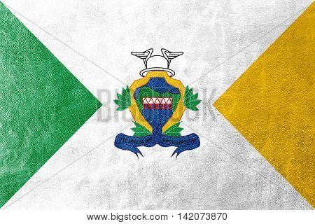 Flag Of Santa Leopoldina, Espirito Santo State, Brazil, Painted On Leather Texture