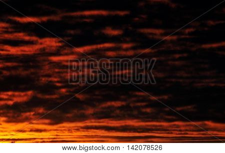 Heavens Turns Red With Black Spotted Clouds