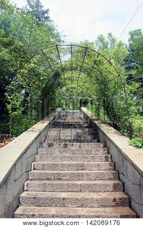 beautiful old stone stairs natural stone diabase with stone steps with greenery arch in summer park outside in Crimea