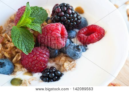 Yogurt with Granola and fresh berries in little bowl. Extreme close-up selective focus.