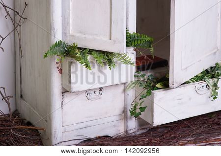 old decorated wooden white cupboard with plants.