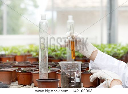 Biologist With Test Tube In Greenhouse