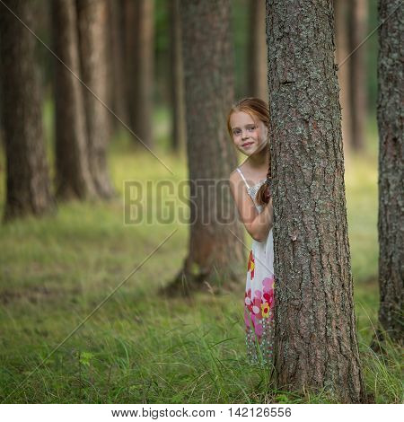Cute little girl peeking from behind a tree in a pine forest.