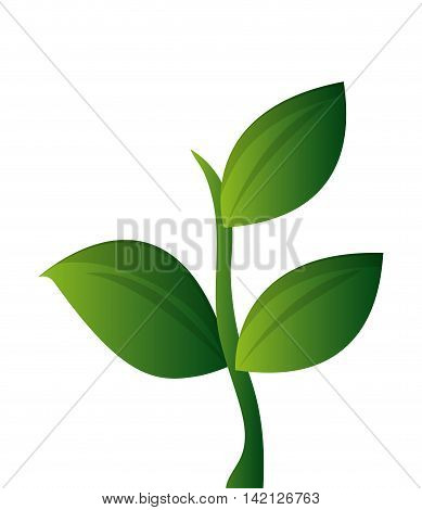 flat design plant sprout icon vector illustration