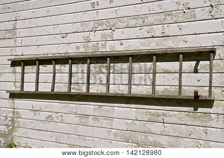 An old wooden ladder is stored horizontally on the wall of a white painted peeling  shed.