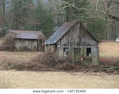 Old gray mountain shack in an old farm field