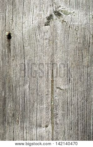Old wooden planks texture with signs of weathering