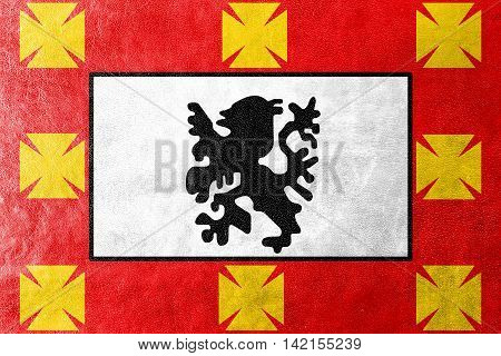 Flag Of Sao Vicente, Sao Paulo, Brazil, Painted On Leather Texture