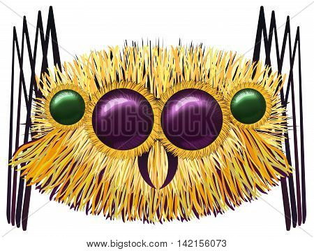 Image of the huge hairy spider - illustration