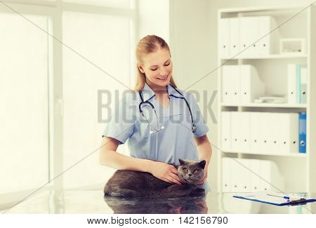 medicine, pet, animals, health care and people concept - happy doctor or veterinarian with stethoscope checking british cat up at vet clinic