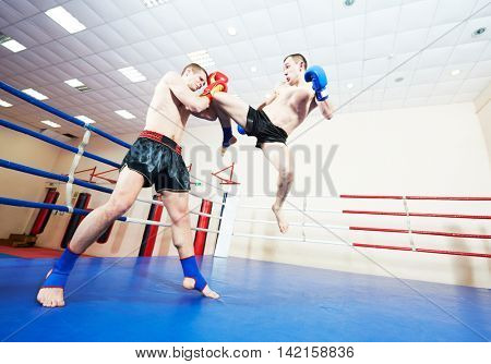 Muay thai boxers at training ring