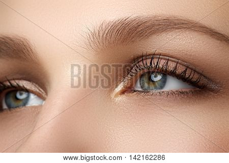 Macro shot of woman's beautiful eye with extremely long eyelashes. Sexy view sensual look. Female eye with long eyelashes