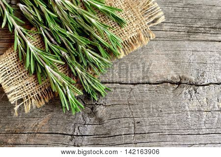 Green sprigs of fresh rosemary on the burlap and old wood background with blank space for text. Aromatic plant used in cooking, medicine, cosmetics