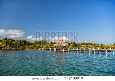 beautiful tropical coastline with wooden bridge and bungalow on ocean or sea water with green palm trees on natural blue sky background outdoor