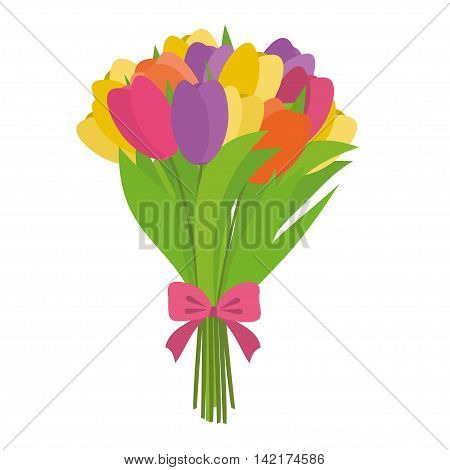 Bouquet of different color tulips vector illustration. Beauty flower bouquet tulips isolated on white background.