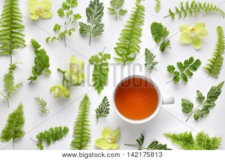 Cup of tea with fern leaf and orchid on white background